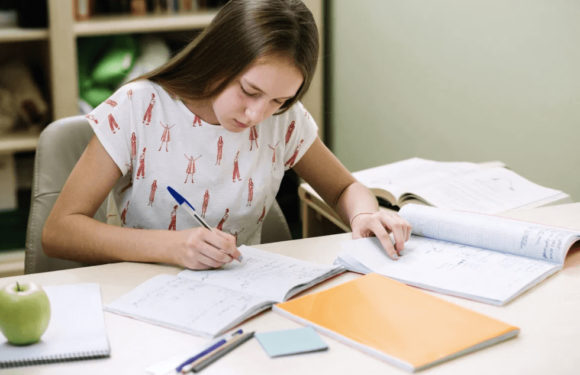 How to deal with essay assignments in an effective manner?