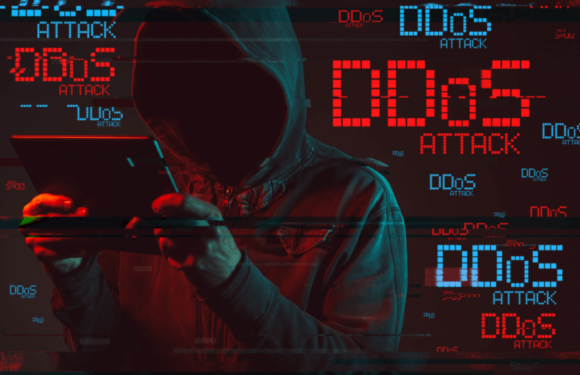 How To Choose The Best DDoS Protected Web Hosting For Your Website?