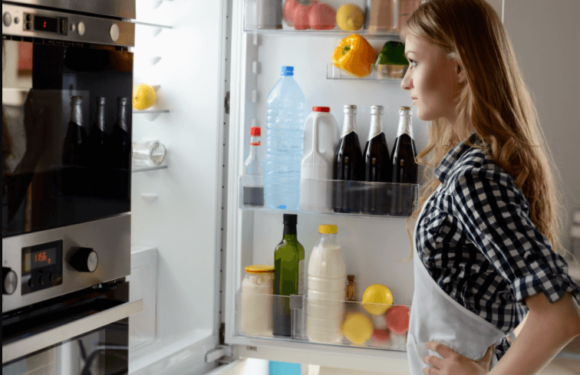 The refrigerator is making noise: Some common refrigerator problems that you need to know